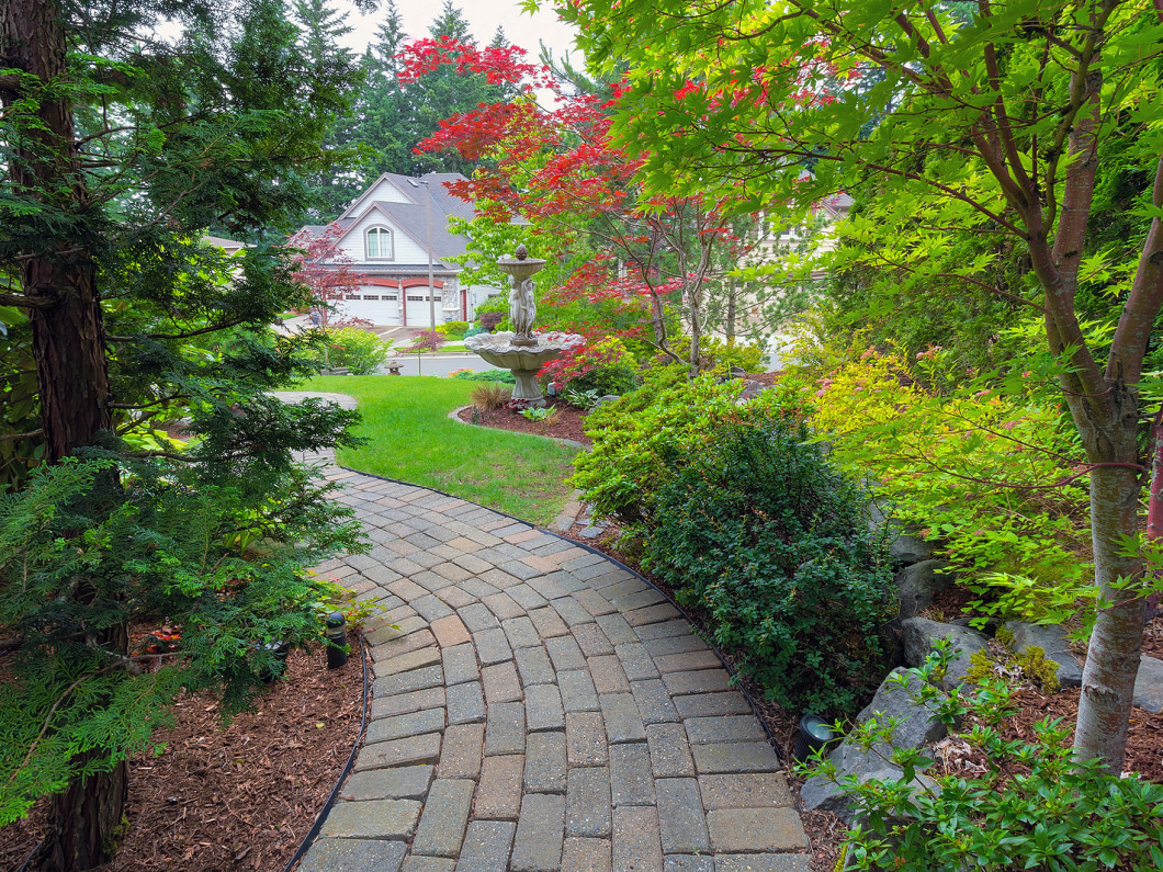 Revitalize your tired looking yard